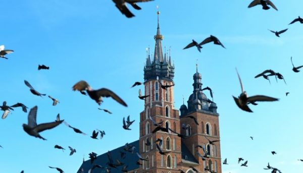 2 Day Trip From Warsaw: The Beauty And The Sorrow Krakow 1 600x343