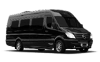 Gdansk and Sopot Tour sprinter2